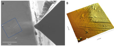 Fig. 2: Combination of AFM, SEM and nanoindentation in one system. A shows the SEM and B the corresponding AFM image