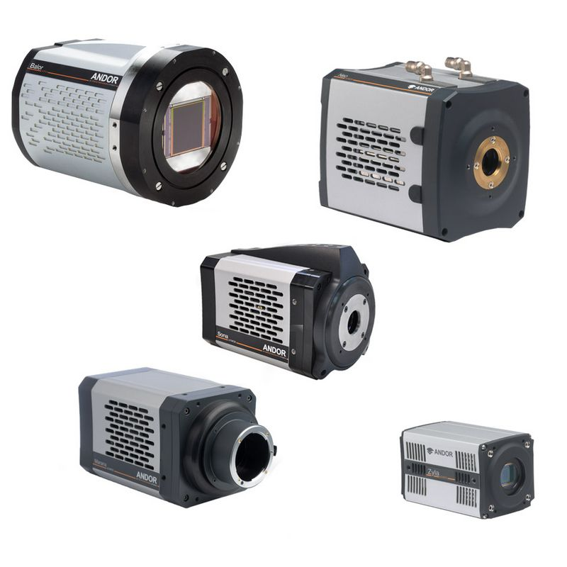 CCD, EMCCD and sCMOS cameras for imaging - sCMOS cameras