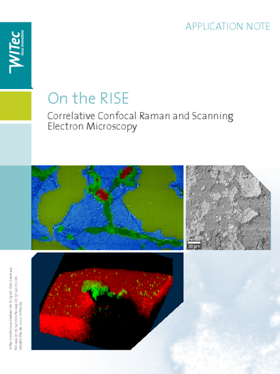 On the RISE - Correlative Confocal Raman and Scanning Electron Microscopy